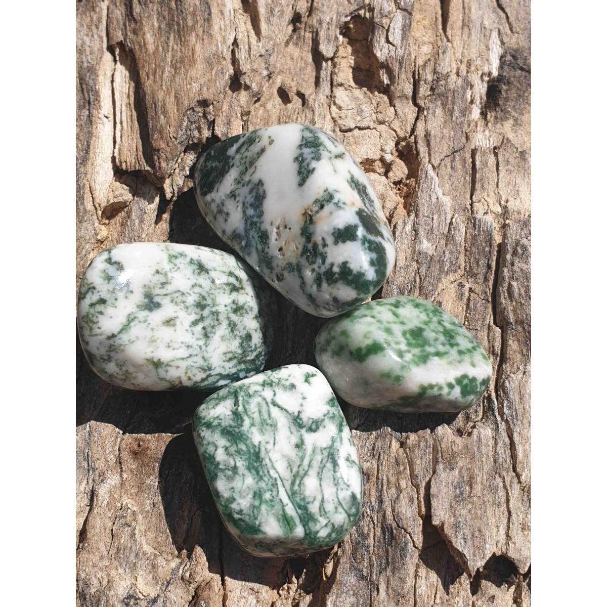 Agate arbre (pierre roulée)